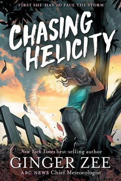Chasing Helicity book