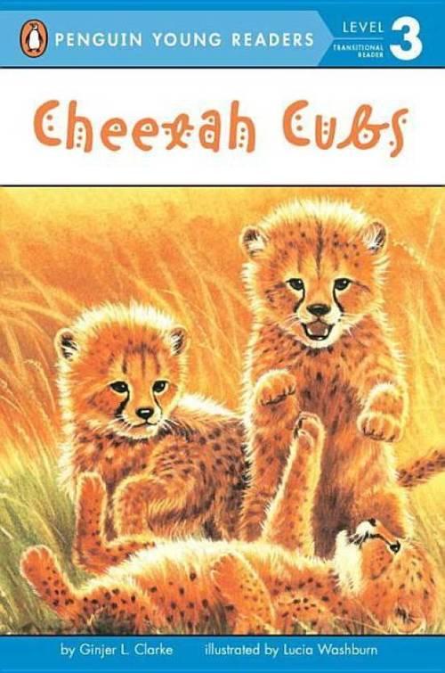 Cheetah Cubs book