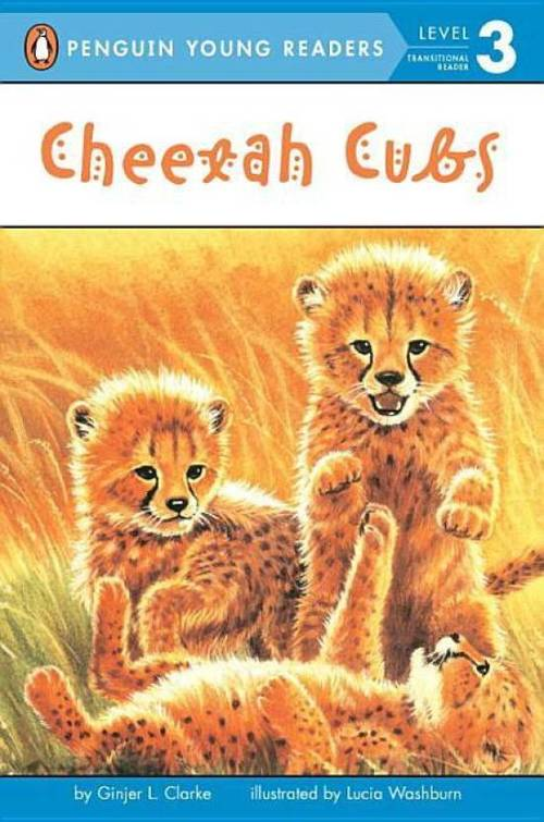 Cheetah Cubs book
