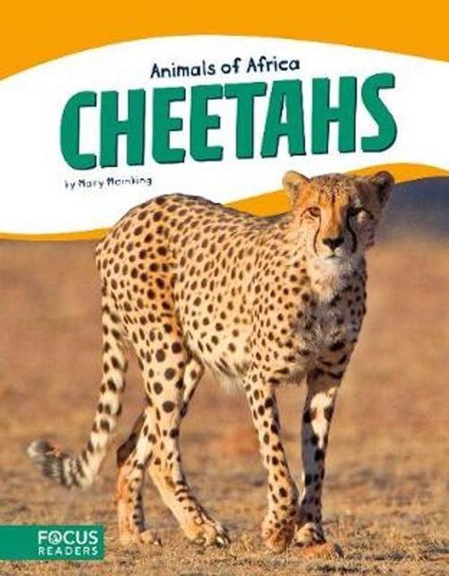 Cheetahs (Focus Readers: Animals of Africa: Beacon Level) book