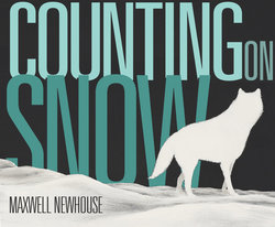 Counting on Snow book