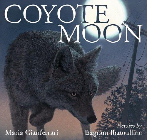 Coyote Moon Book