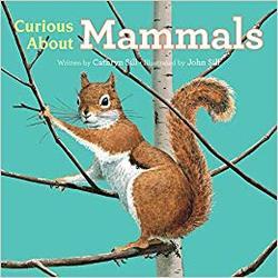 Curious About Mammals book