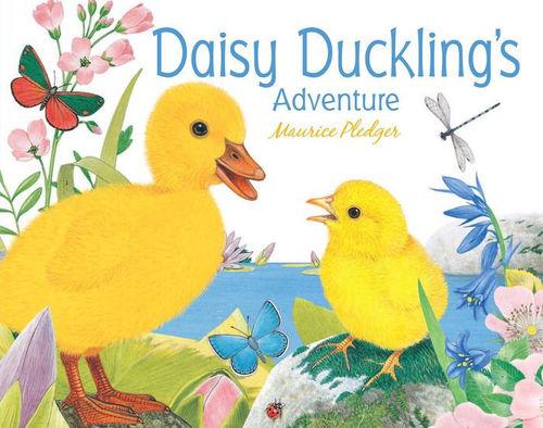 Daisy Duckling's Adventure book