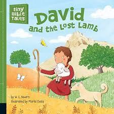David and the Lost Lamb book