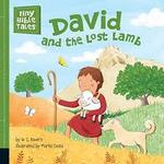 David and the Lost Lamb book