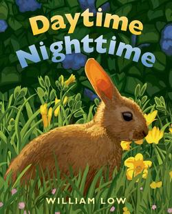Daytime Nighttime book