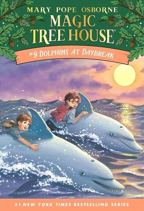 Dolphins at Daybreak book