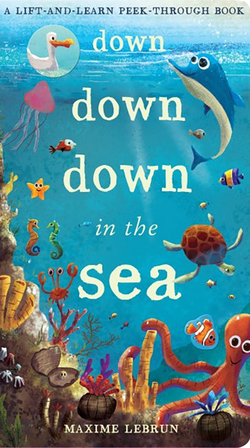 Down Down Down in the Sea Book