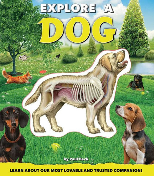 Explore a Dog book