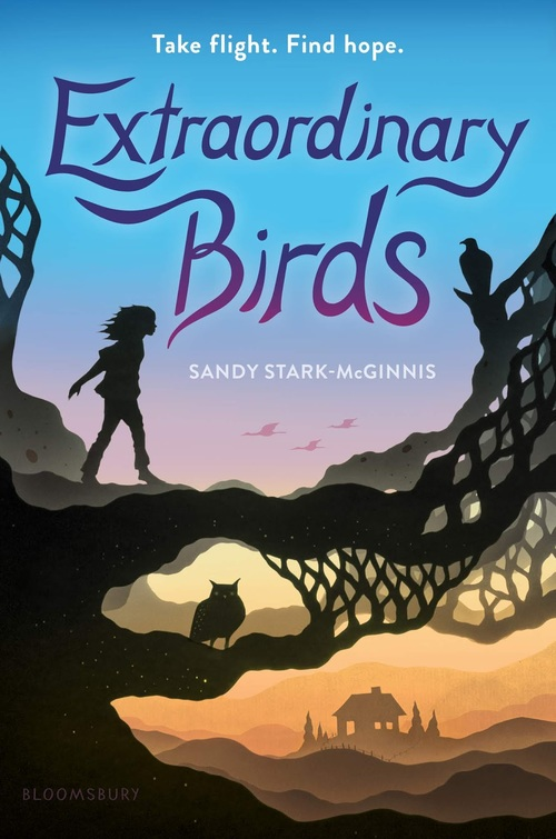 Extraordinary Birds book