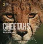 Face to Face With Cheetahs (Face to Face with Animals) book