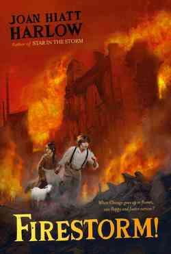 Firestorm! book