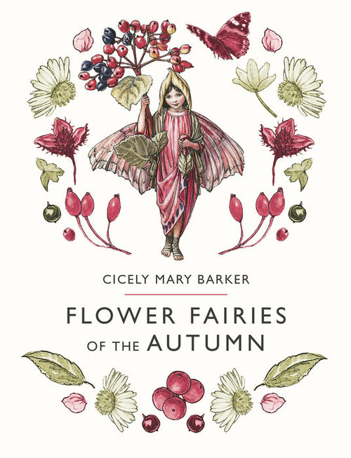 Flower Fairies of the Autumn book