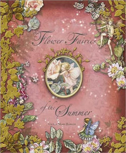 Flower Fairies of the Summer book