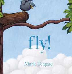 Fly! book