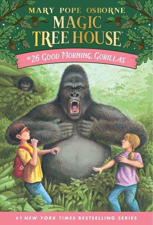 Good Morning, Gorillas book