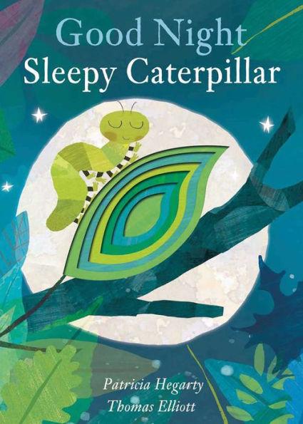 Good Night Sleepy Caterpillar book