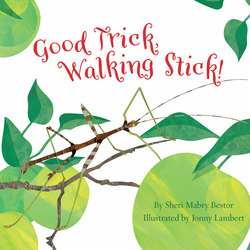 Good Trick Walking Stick book