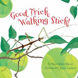 Good Trick Walking Stick book