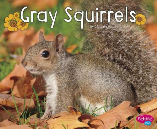 Gray Squirrels book