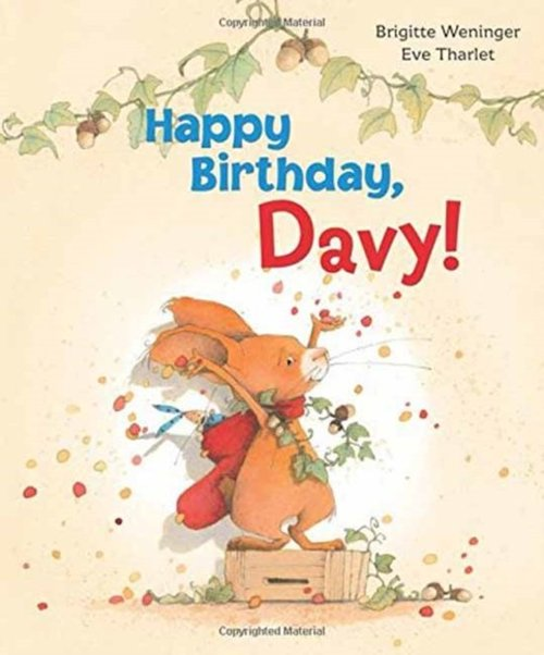 Happy Birthday Davy! Book
