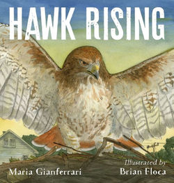 Hawk Rising book