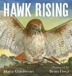 Hawk Rising book
