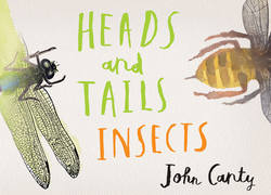 Heads and Tails: Insects book
