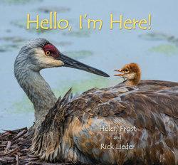 Hello, I'm Here! book