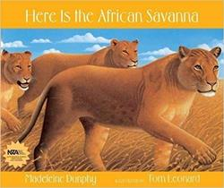 Here Is the African Savanna Book