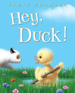 Hey, Duck! book