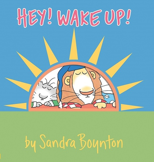 Hey! Wake Up! book