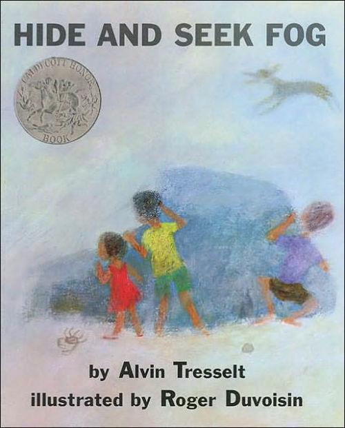 Hide and Seek Fog book