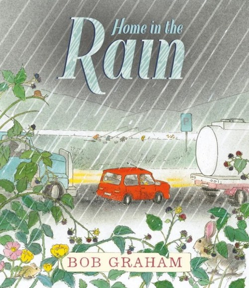 Home in the Rain book