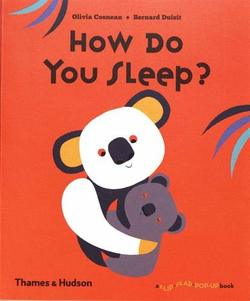 How Do You Sleep? book