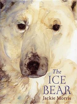 Ice Bear book