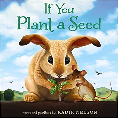 If You Plant a Seed book