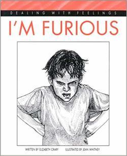 I'm Furious book
