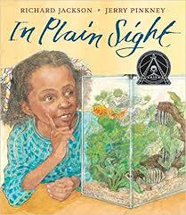 In Plain Sight: A Game book