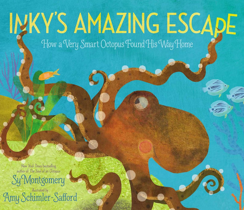 Inky's Amazing Escape book