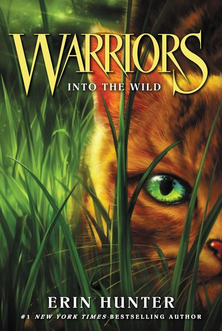 Into the Wild book