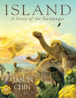 Island: A Story of the Galápagos book