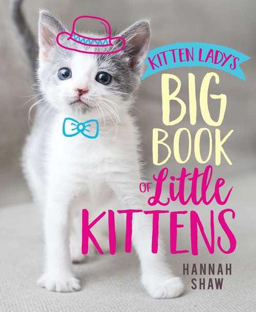 Kitten Lady's Big Book of Little Kittens book
