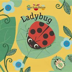 Ladybug book