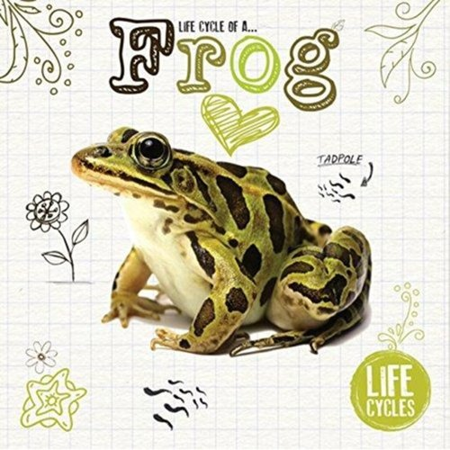 Life Cycle of a Frog Book