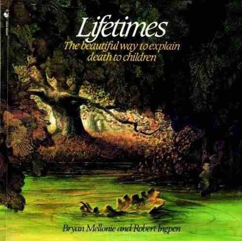 Lifetimes book