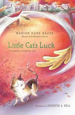 Little Cat's Luck book