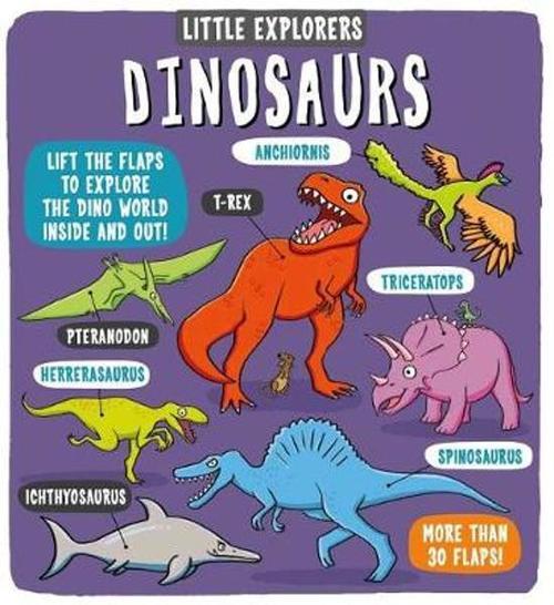 Little Explorers: Dinosaurs book