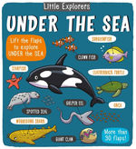 Little Explorers: Under the Sea book